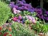 Jardin florentin, pergola 02