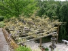 Jardin florentin, pergola 08