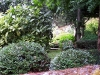 Jardin florentin, pergola 11