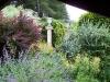 Jardin florentin, autour des grenouilles 01