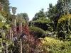 Jardin florentin, autour des grenouilles 02