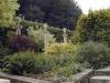 Jardin florentin, autour des grenouilles 03