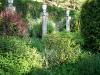 Jardin florentin, autour des grenouilles 04