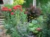 Jardin florentin, autour des grenouilles 09