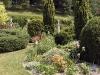 Jardin florentin, hostas 01