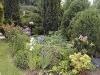 Jardin florentin, hostas 03
