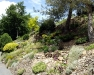 Grande rocaille 06