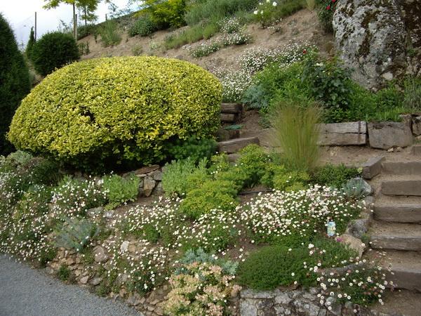 les jardins du gu muret bas de talus. Black Bedroom Furniture Sets. Home Design Ideas