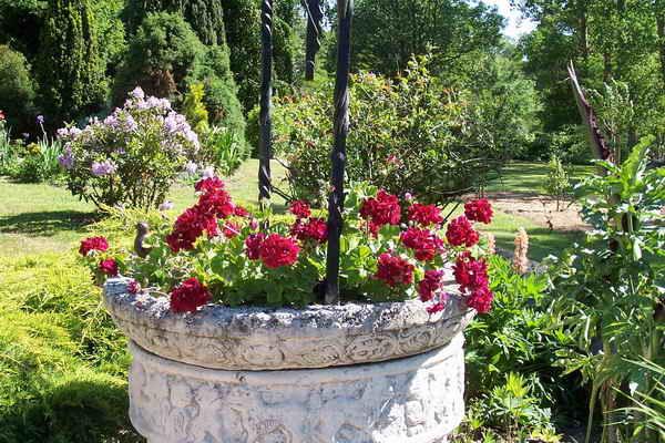 Les jardins du gu autour du puits for Puits decoratif jardin