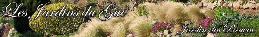 Bandeau-Brave-Site1