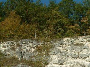 Terrain calcaire